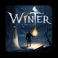 冬日生存无限资源版