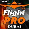 专业飞行模拟器:迪拜(魔玩单机)