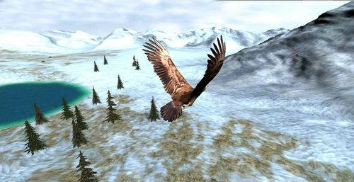 鹰狩猎之旅