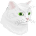 猫与幽灵之路游戏