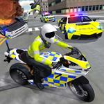警察驾驶模拟无限金币版