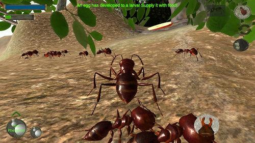 蚂蚁模拟3D下载