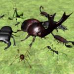 昆虫战斗模拟器中文汉化版
