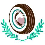 奥雷利亚之轮汉化版