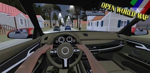 多人汽车驾驶模拟2020下载