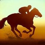 家族传奇马匹养成竞技无限金币版