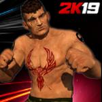 超级明星摔跤革命3D战斗解锁完整版