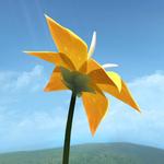 花flower