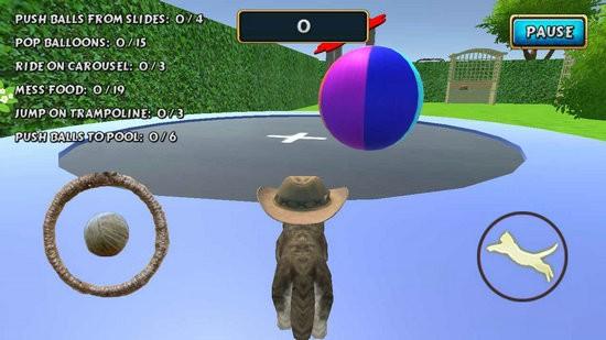 动物猫模拟器破解版下载