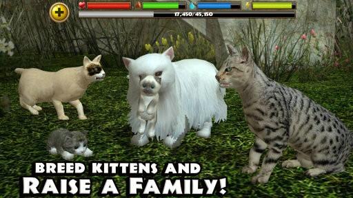 终极流浪猫模拟器下载破解版