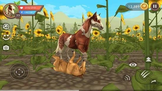 野生动物模拟器无限金币钻石版