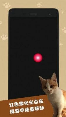 逗猫神器app最新版下载