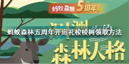 蚂蚁森林五周年开运礼怎么领取 蚂蚁森林五周年开运礼领取方法